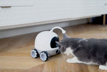 Rocky Companion And Playmate Robot For Pets Featured Image23 (1)